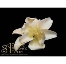 Цветы из мастики - Цветок жасмина, Белый (11936*G/p)