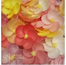 Вафельные цветы - Флоксы, Микс, 10шт. (10/13069RA)